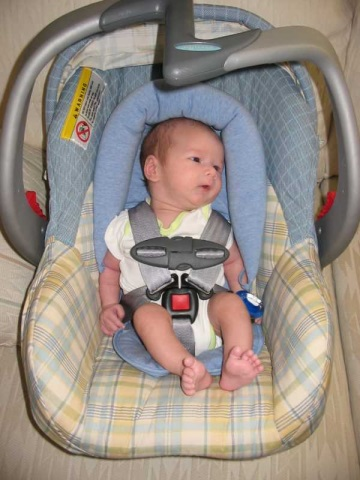 Chillin' in his car seat